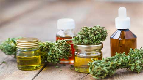 Steps to Getting a medical cannabis growing license